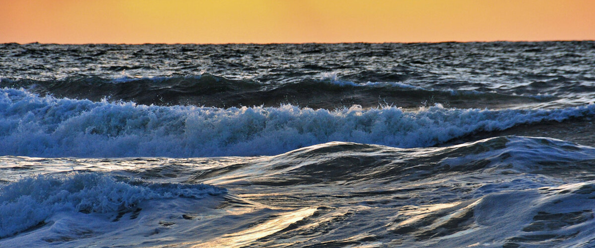 Think Tank North Sea reflecteert in 2021 over Environmentally sustainable blue growth