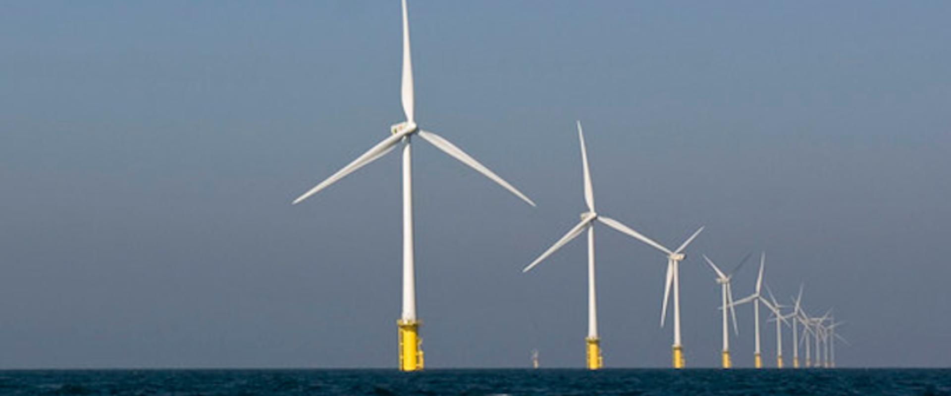 Le Think Tank North Sea commence le développement de la vision sur la Croissance bleue écologiquement durable en octobre