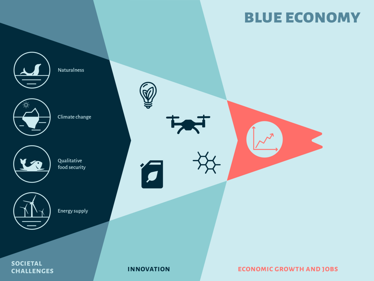 Blue Economy and Innovation